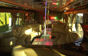 Los Angeles Party Bus 40-45 passenger